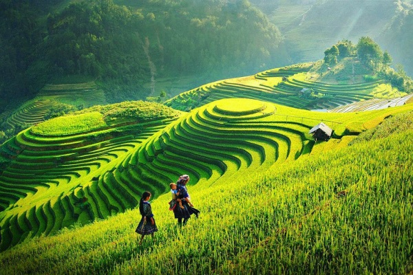 mu-cang-chai-pys-travel010