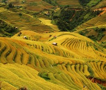 mu-cang-chai-pys-travel