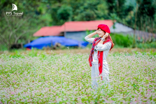 du-lich-ha-giang-pys-travel-3