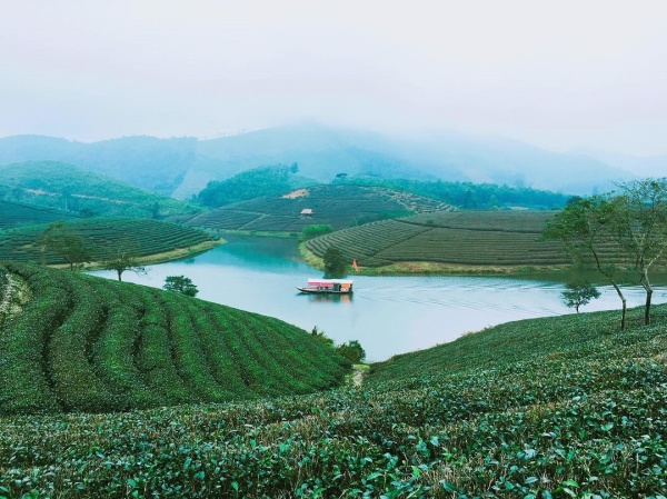 oc-dao-che-thanh-chuong-nghe-an-pys-travel005_001