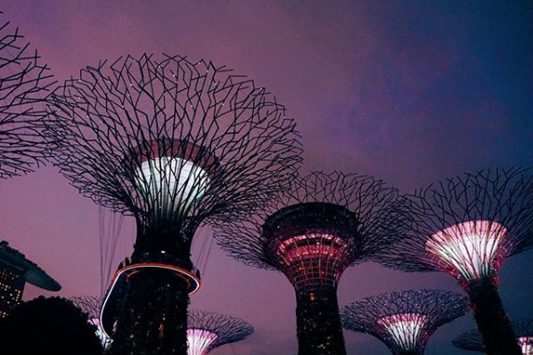 Garden-by-the-Bay-ở-Singapore-PYS-Travel-1