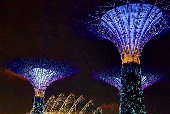 Garden-by-the-Bay-ở-Singapore-PYS-Travel-7