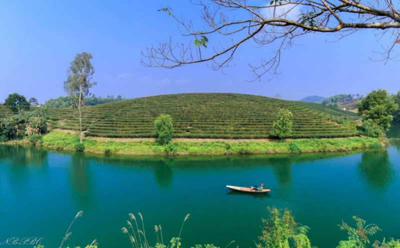 Oc-dao-che-Nghe-An-pys-travel006.png