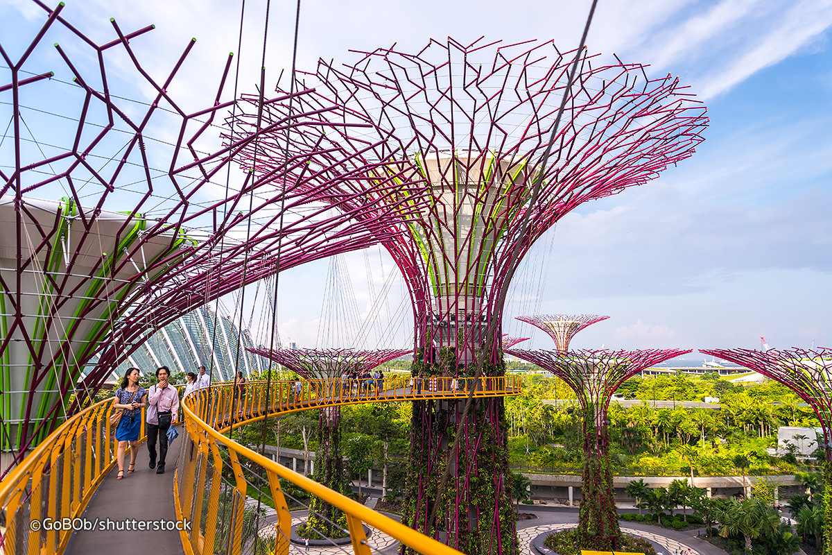 gardens-by-the-bay-supertree-grove